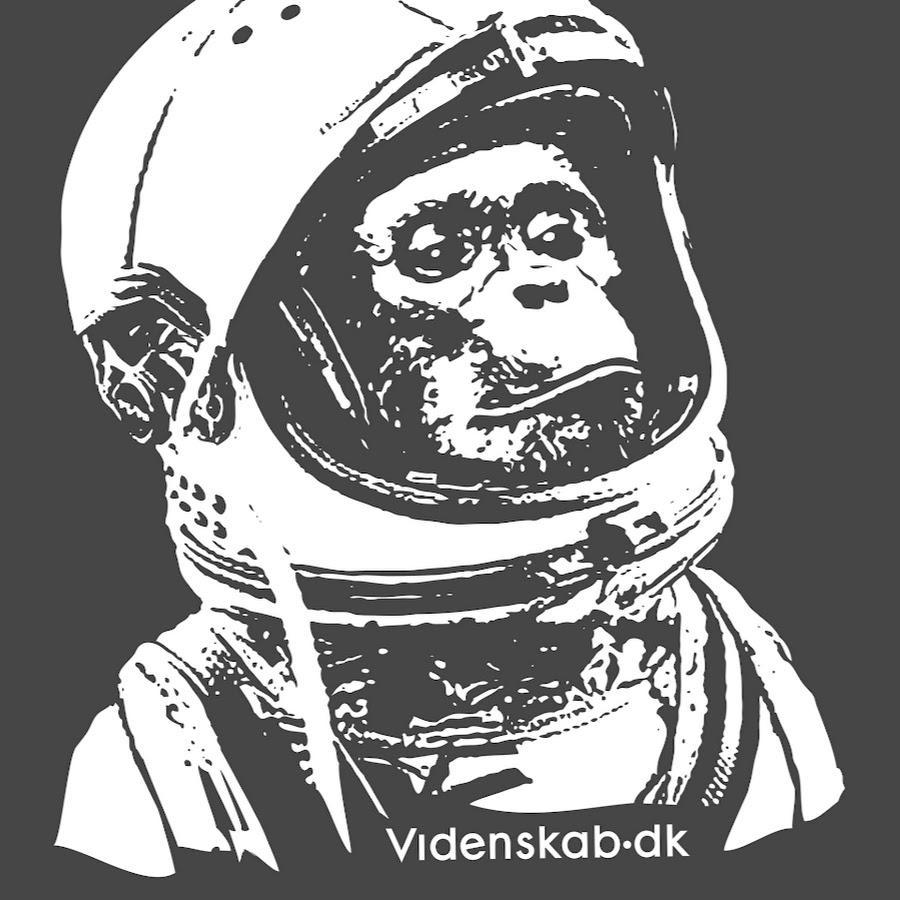 Videnskab.dk logo