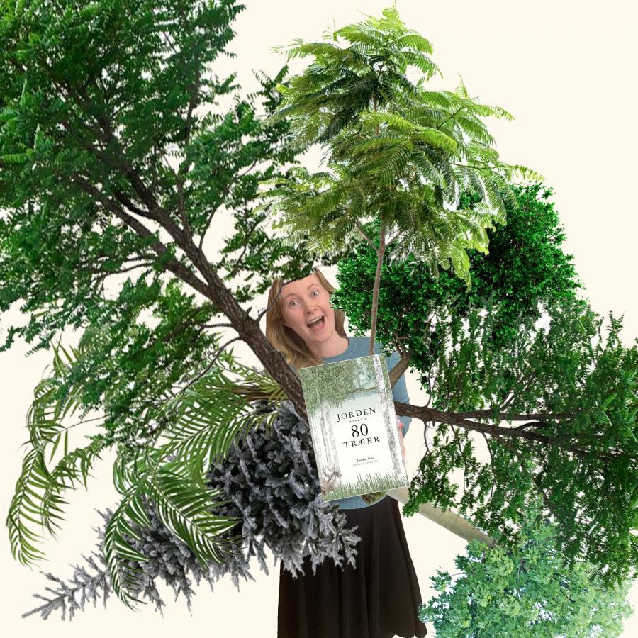 Ann med træer