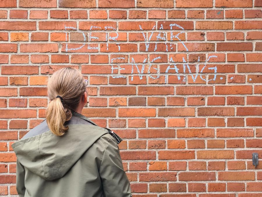 Litteratur til murstenslæseren